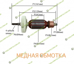 Якорь на дрель DWT (ДВТ) SBM 810V/VS