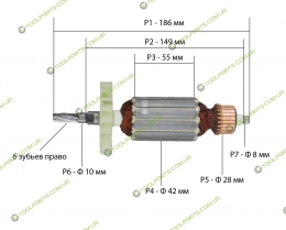 Якорь на торцовочную пилу Practyl J1X-KZ5-21