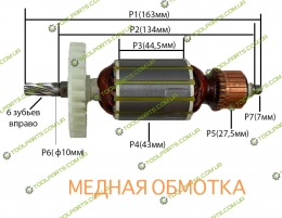 Якорь на дисковую пилу DWT (ДВТ) HKS 12-55